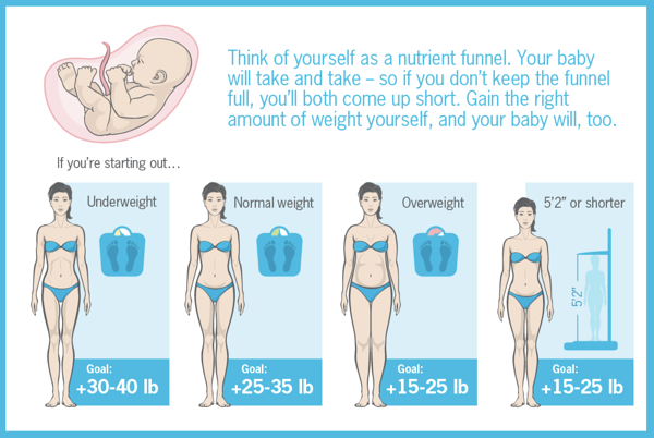 Precision Nutrition pregnancy and weight gain